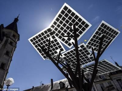 eTree - акация на солнечных батареях