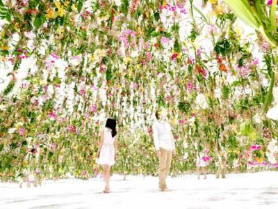 Floating Flower Garden, или интерактивный цветник от TeamLab
