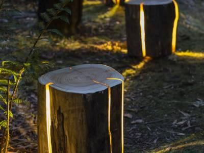 Оригинальные лампы - пеньки от тасманийского дизайнера Дункана Мирдинга (Dunkan Meerding)