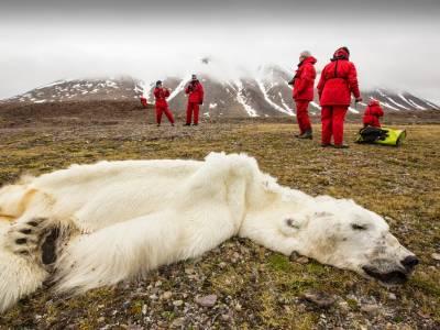 13 фотографий, отвечающих на неудобные вопросы о перенаселении планеты