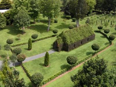 Барри Кокс из Новой Зеландии вырастил «Церковь из деревьев»