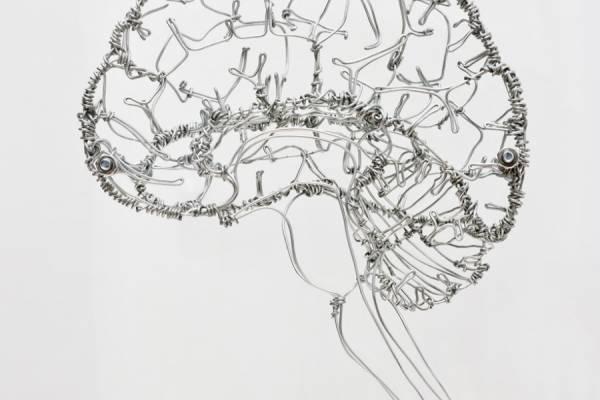 Скульптуры из проволоки от Федерико Карбаджал (Federico Carbajal)